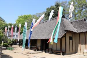 O Takahashis velho moram - o Festival de Menino...